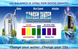 HIGH ANTIOXIDANT RICH WATER - ALKALISED AND SUPER HYDRATING